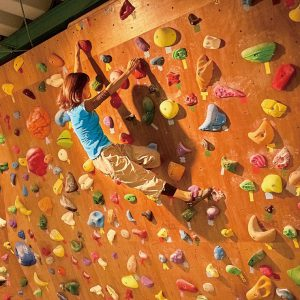 Bouldering Gym Ridge Line