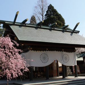 富山県西部で初詣に行くならここ!