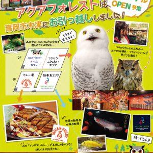 フクロウ・熱帯魚・金沢カレーが一度に味わえるSHOPがオープン!!